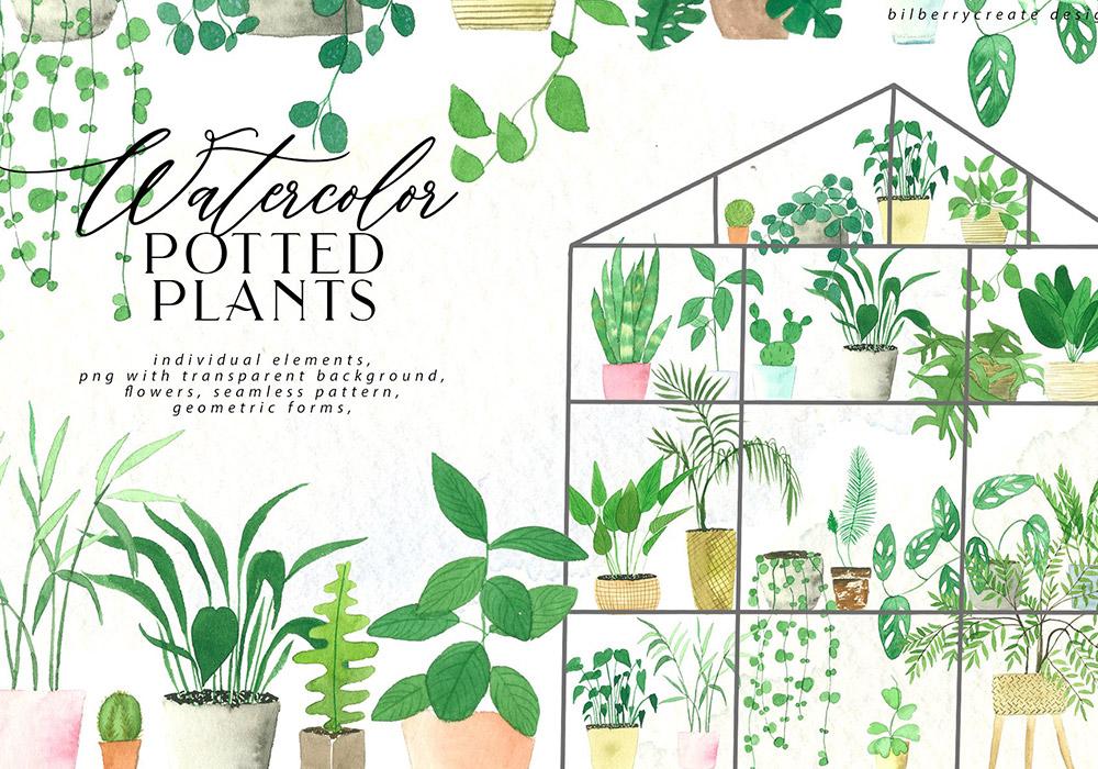水彩盆栽植物矢量素材 Watercolor cozy potted plants