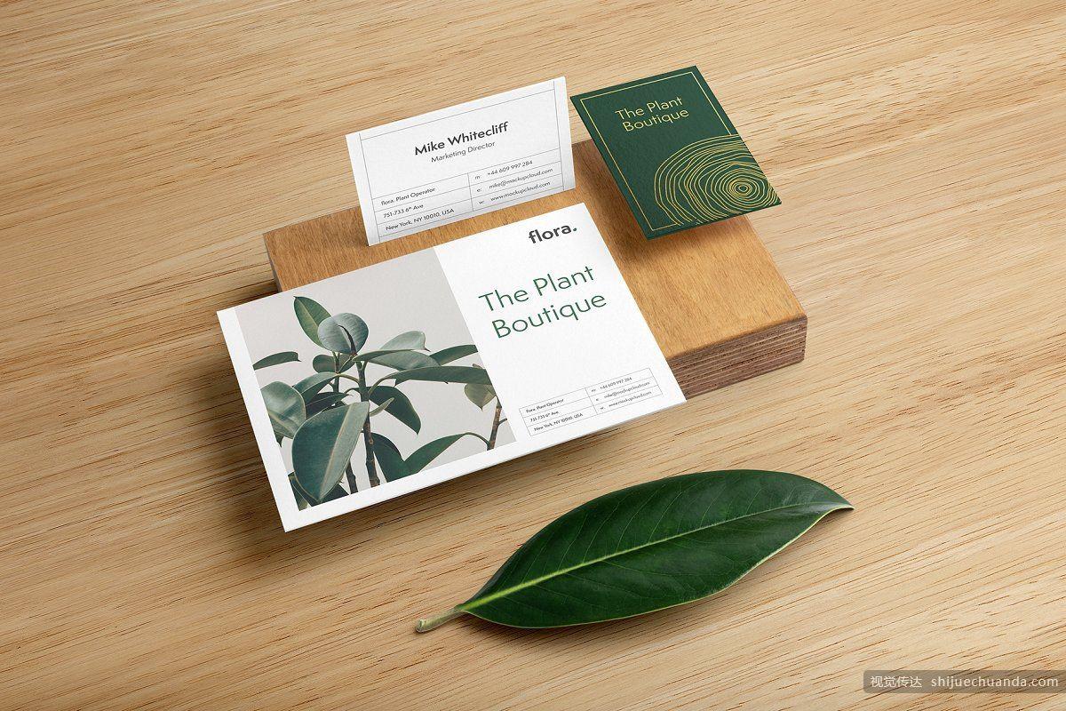 高端植物系品牌样机 Flora Branding Mockup