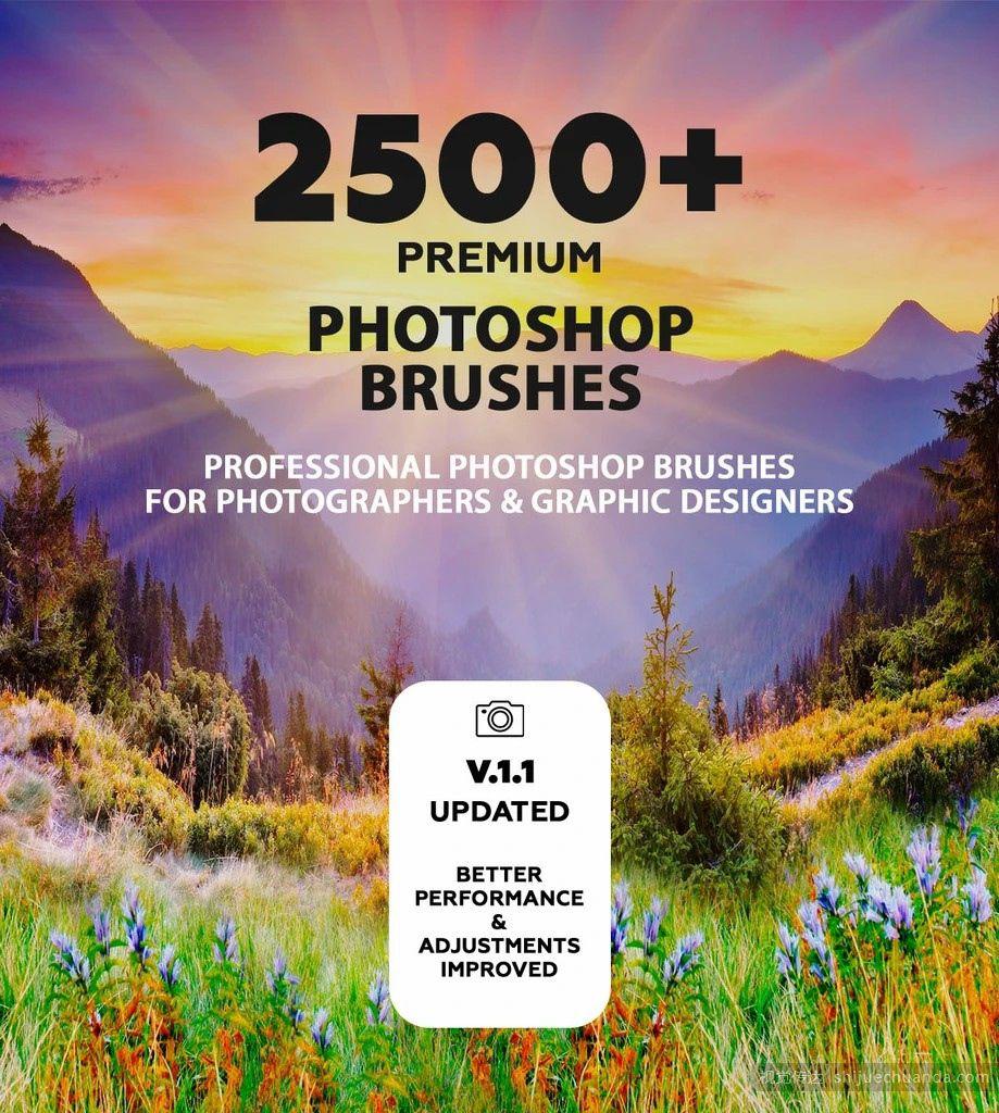 2500+ 创意艺术笔刷大集合 PHOTOSHOP BRUSHES