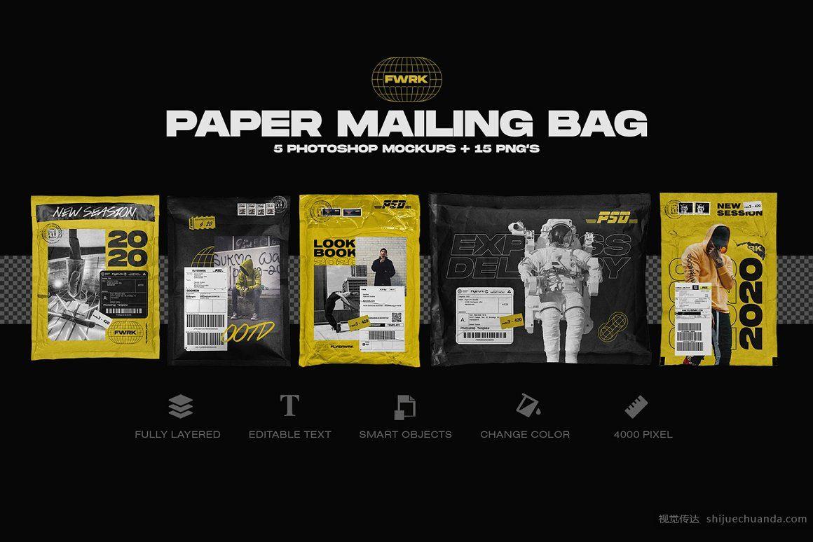 纸质包裹快递袋纸箱样机