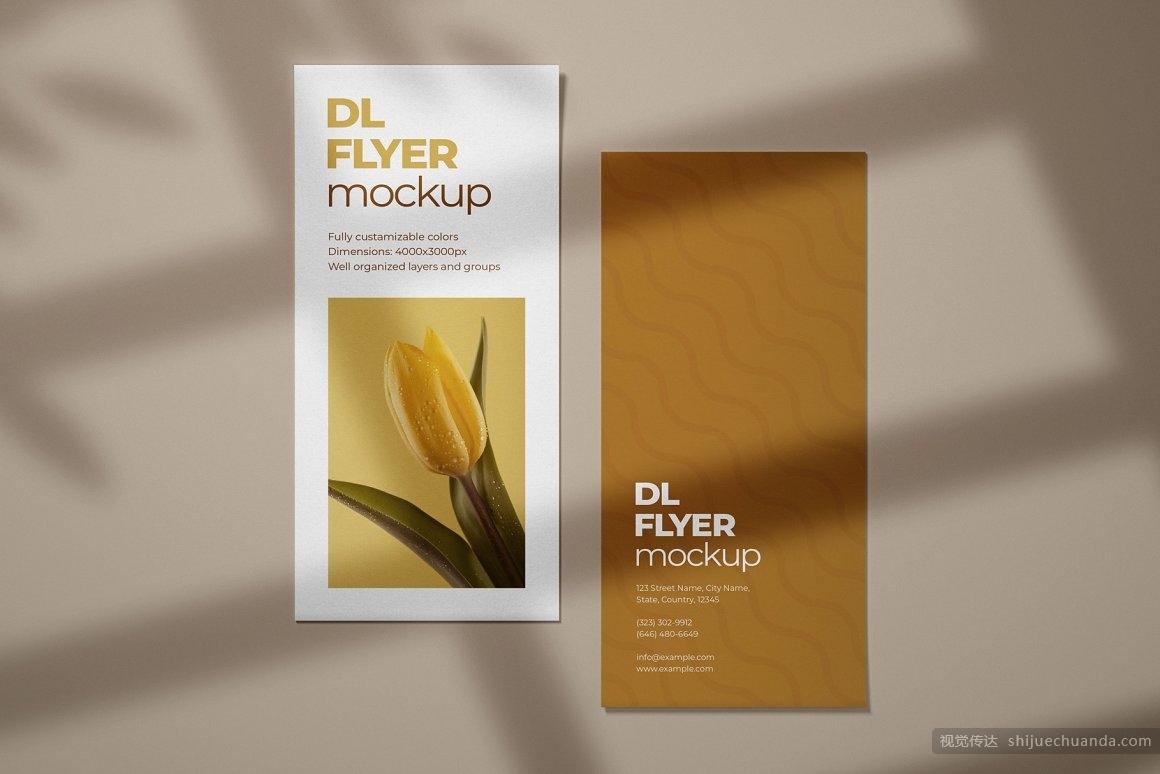 宣传单页样机集 DL Flyer Mockup Set