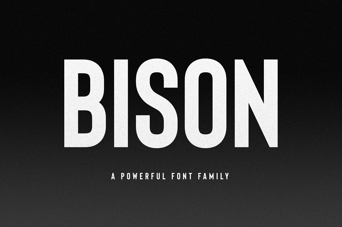 Bison字体