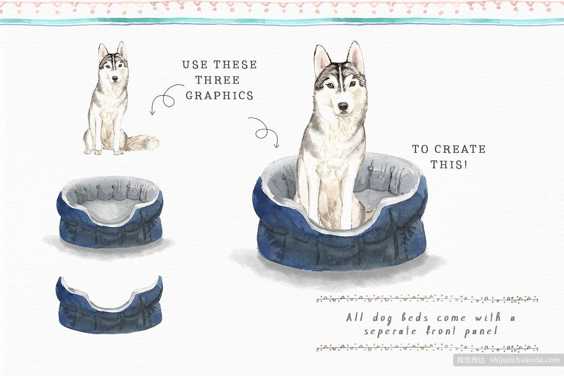 丰富的狗元素水彩套装