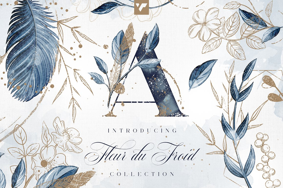 芙蓉花图形合集 Fleur du Froid Graphic Collection