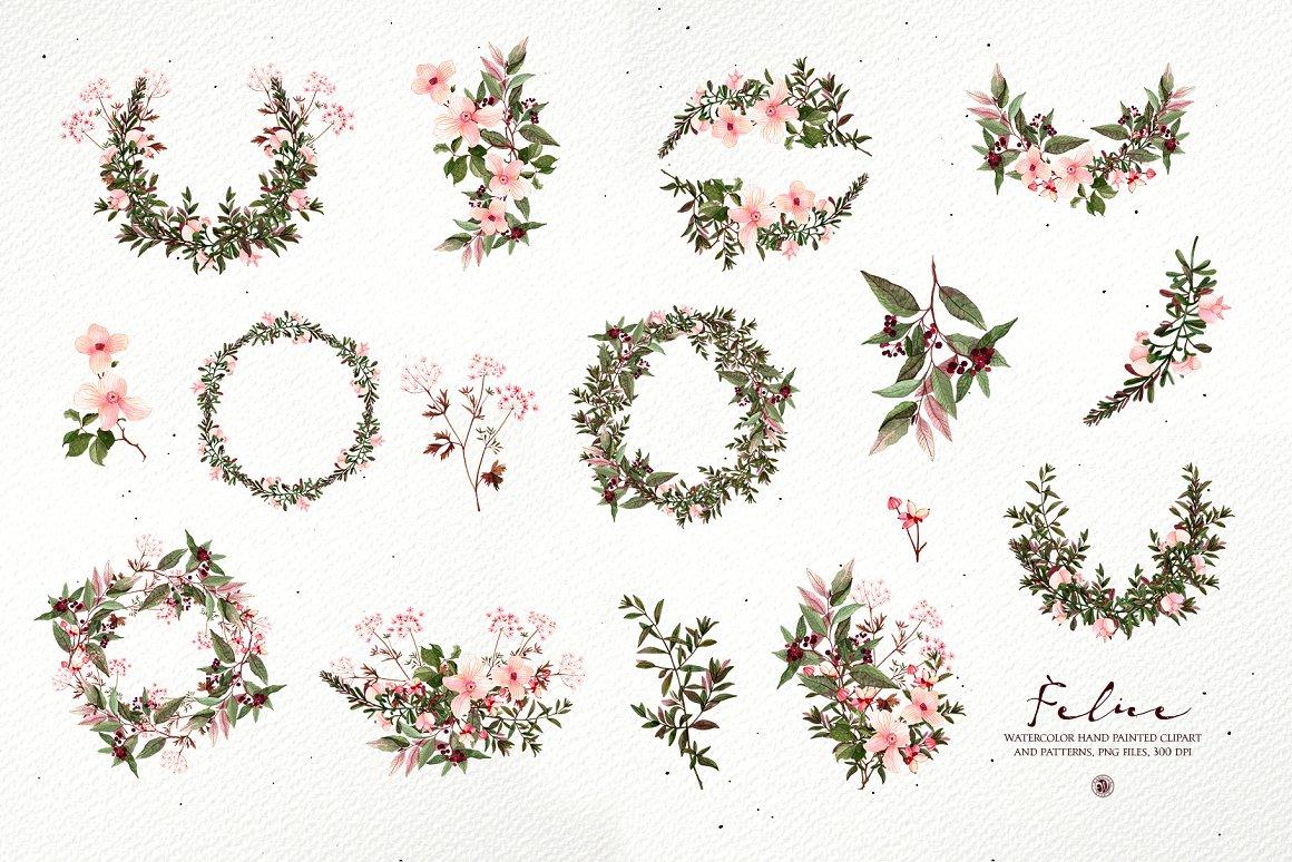 水彩花卉设计元素套装