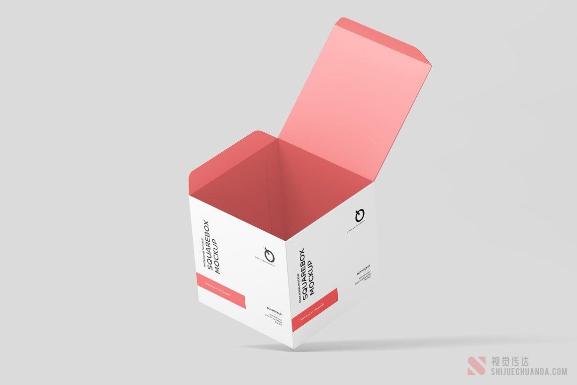 方形盒子样机模板