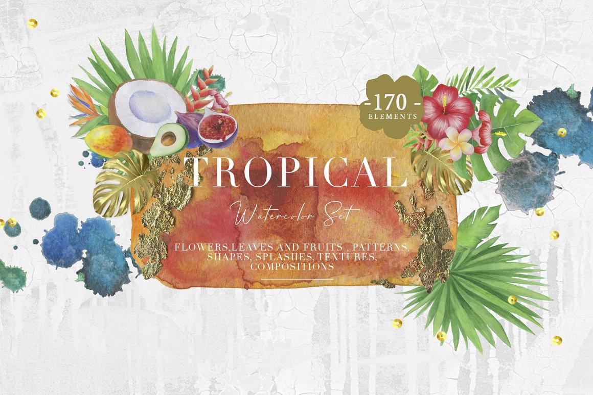 热带植物水果水彩画合集 Tropical Watercolor Set