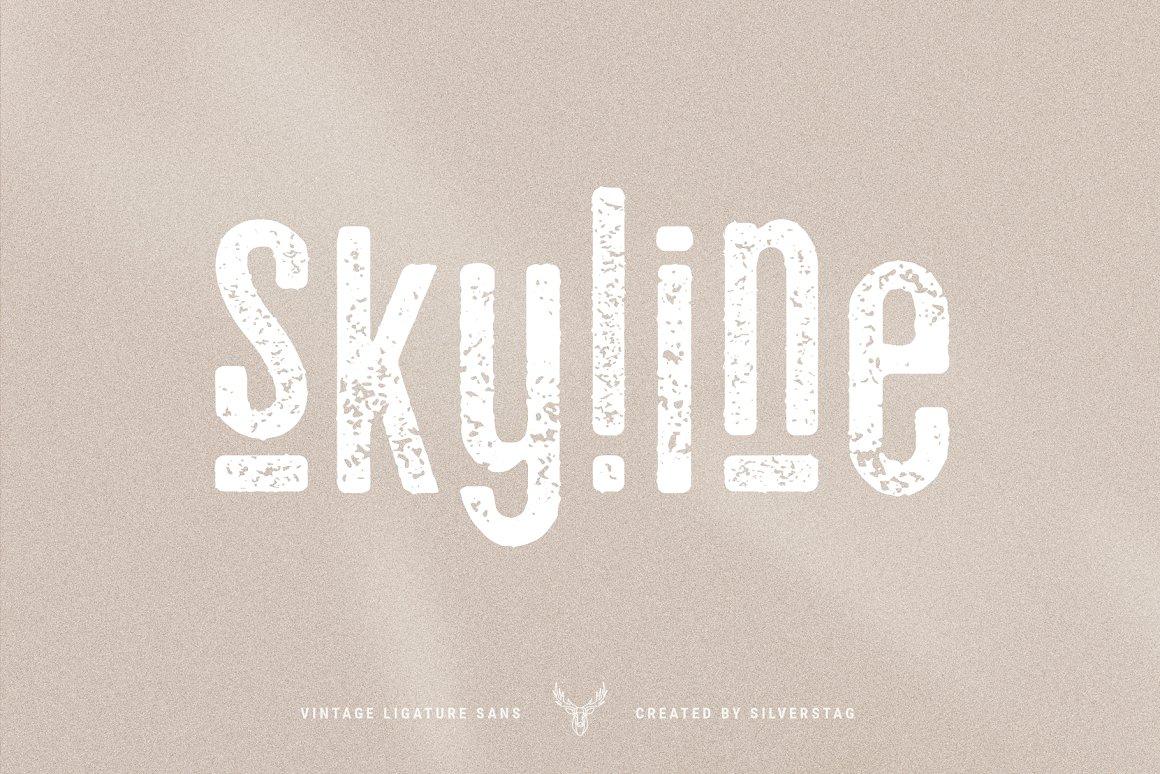 老式连字sans字体 skyline