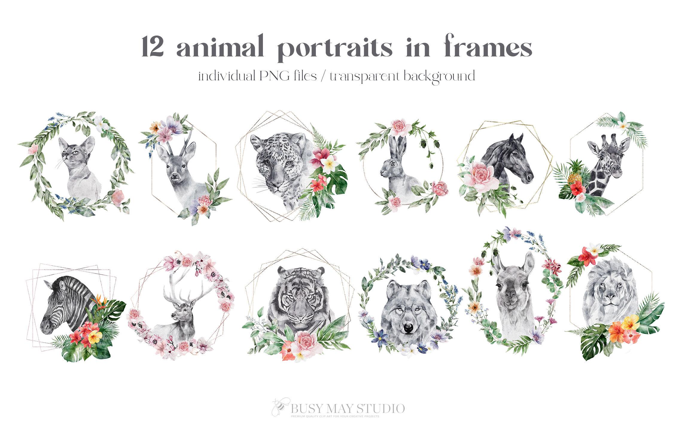 水彩动物肖像和花朵PNG透明素材