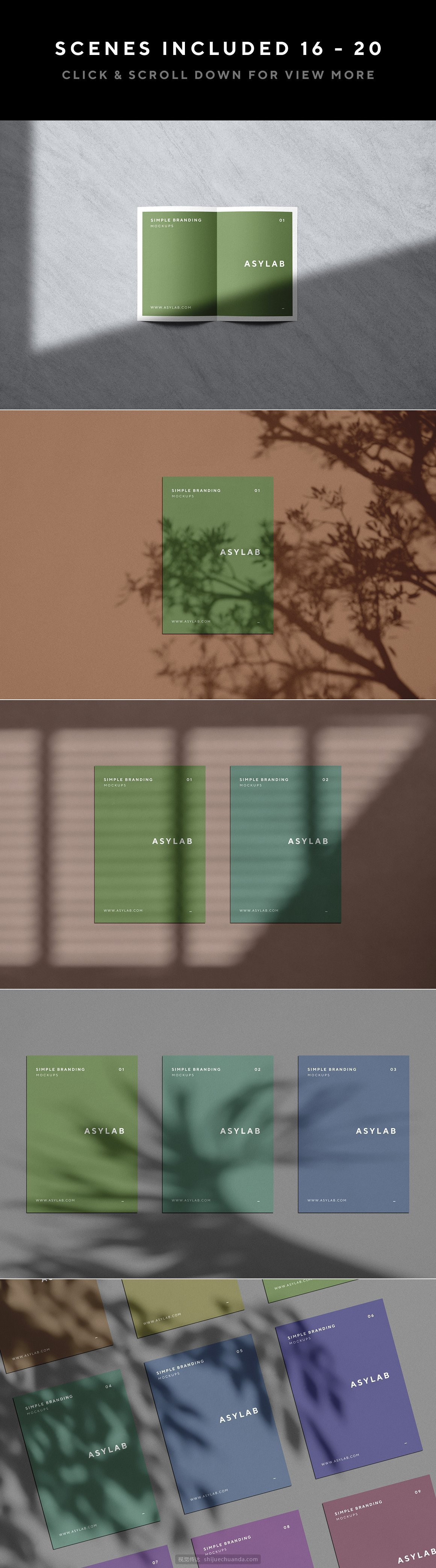 自然阳光植物光影品牌设计提案样机PSD模板